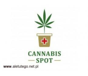 Hurtownia CBD - cannabis-spot.pl